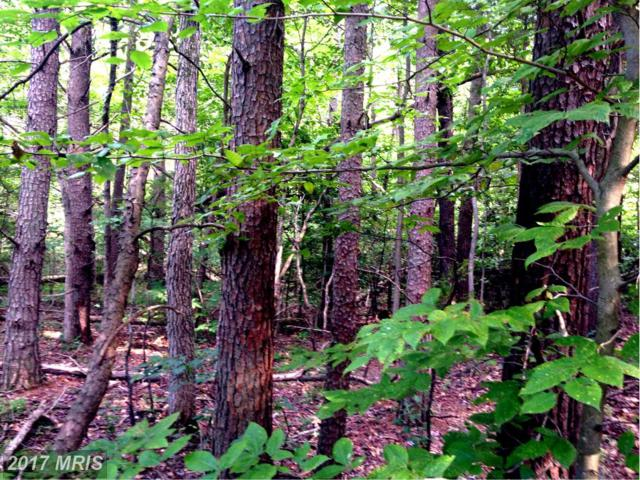 Shumate Lane, Fredericksburg, VA 22406 (#ST9875066) :: Pearson Smith Realty