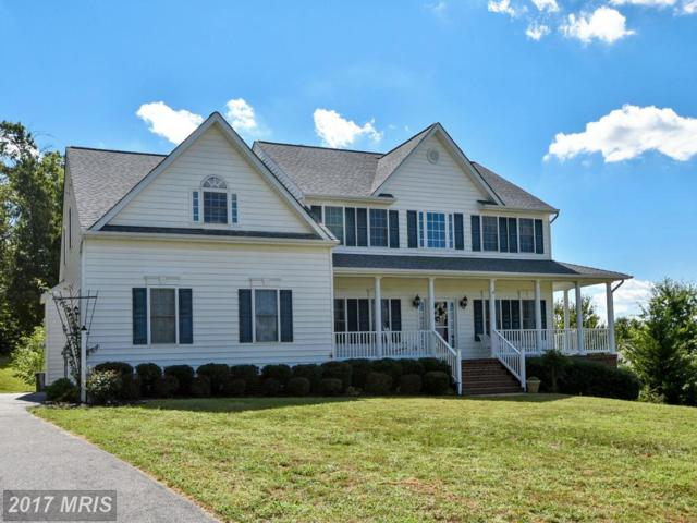 74 Havenwoods Way, Fredericksburg, VA 22406 (#ST9911516) :: Pearson Smith Realty