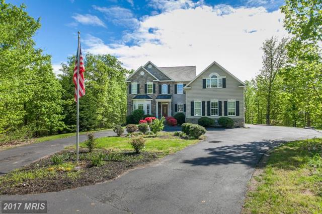 384 Gentle Breeze Circle, Fredericksburg, VA 22406 (#ST9928999) :: LoCoMusings