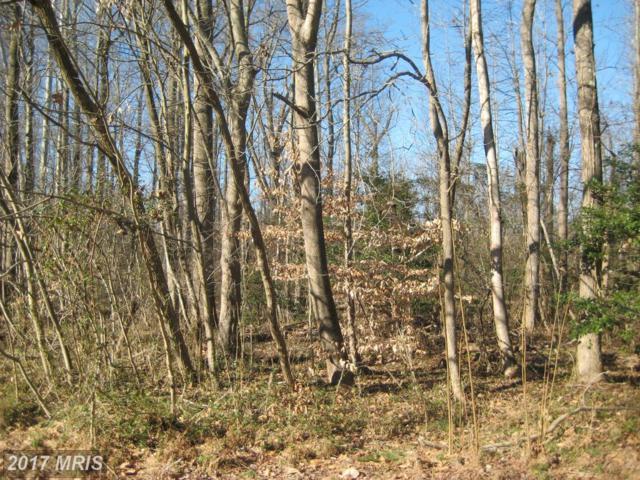 Wood Landing Road, Fredericksburg, VA 22405 (#ST9955523) :: LoCoMusings