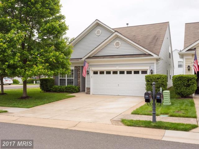 236 Smithfield Way, Fredericksburg, VA 22406 (#ST9957414) :: Pearson Smith Realty