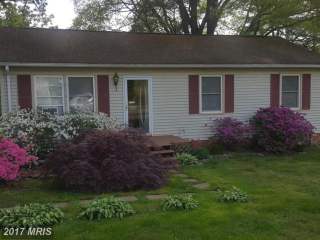1411 Northridge Drive, Fredericksburg, VA 22405 (#ST9958511) :: Pearson Smith Realty