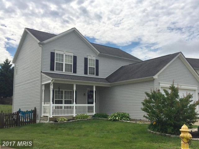 32 Hot Springs Way, Stafford, VA 22554 (#ST9962960) :: Pearson Smith Realty
