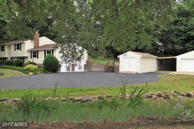 1200 Amherst Avenue, Fredericksburg, VA 22405 (#ST9971270) :: LoCoMusings