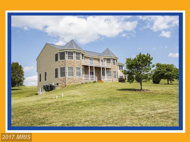 51 Equestrian Drive, Stafford, VA 22556 (#ST9994086) :: Pearson Smith Realty