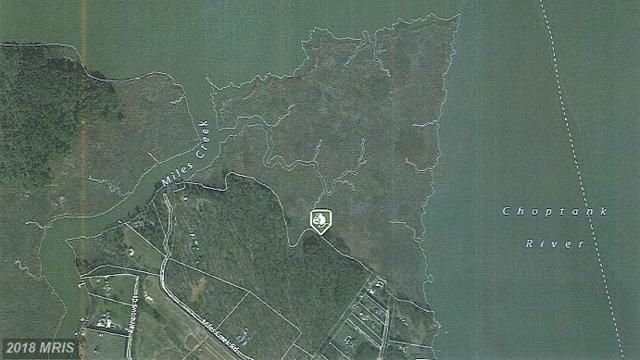 Orchard Road, Trappe, MD 21673 (#TA10061663) :: Keller Williams Pat Hiban Real Estate Group