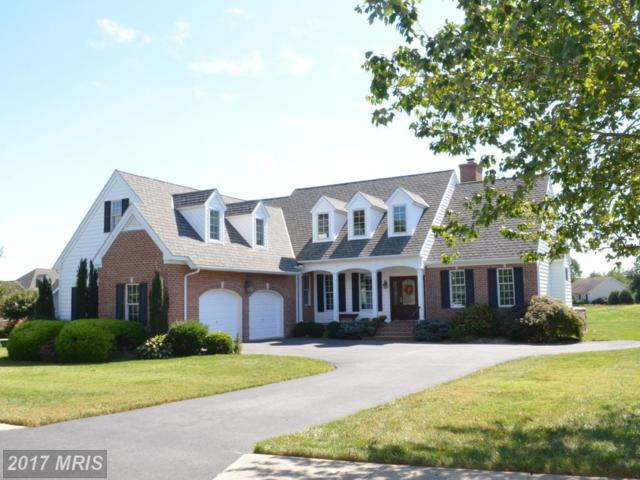 28495 Waterview Drive, Easton, MD 21601 (#TA10065409) :: LoCoMusings