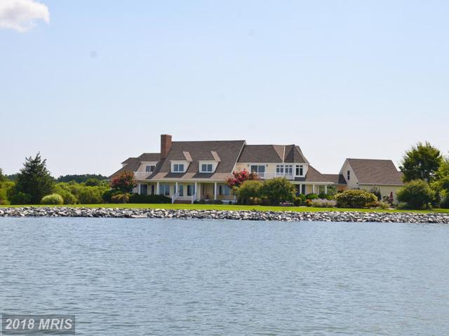 7630 Ferry Cove Road, Sherwood, MD 21665 (MLS #TA10190195) :: RE/MAX Coast and Country