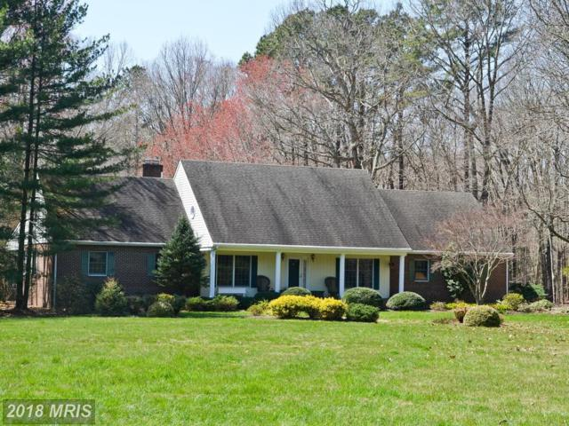 28001 Southside Island Creek Road, Trappe, MD 21673 (#TA10195376) :: The Gus Anthony Team