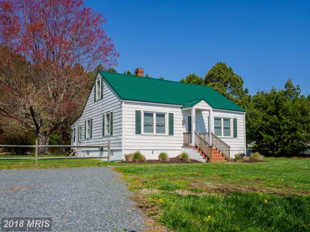 5008 Black Walnut Point Road, Tilghman, MD 21671 (#TA10206460) :: Keller Williams Pat Hiban Real Estate Group