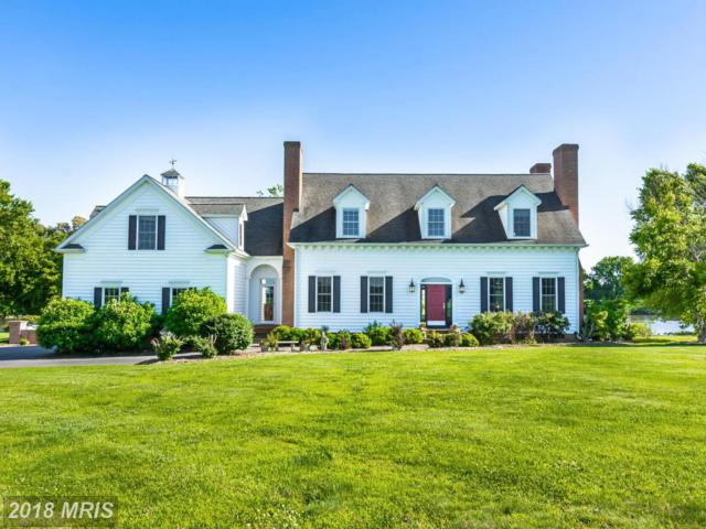 3804 The Park Lane, Trappe, MD 21673 (#TA10206634) :: RE/MAX Coast and Country
