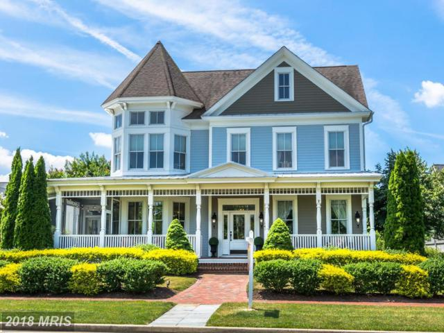28384 Village Lake Way, Easton, MD 21601 (#TA10278715) :: RE/MAX Coast and Country