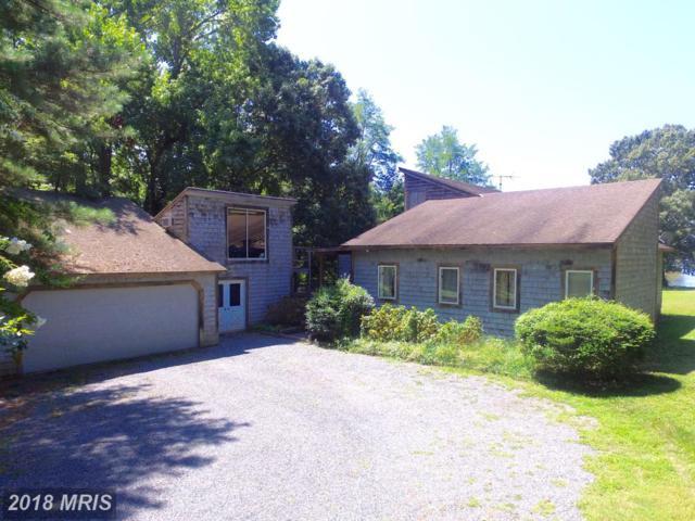 23901 Mount Misery Road, Saint Michaels, MD 21663 (#TA10322437) :: Eric Stewart Group