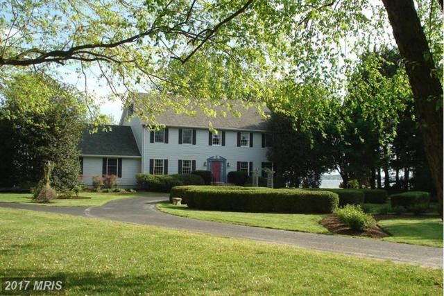 8246 Ingleton Circle, Easton, MD 21601 (#TA9874034) :: LoCoMusings