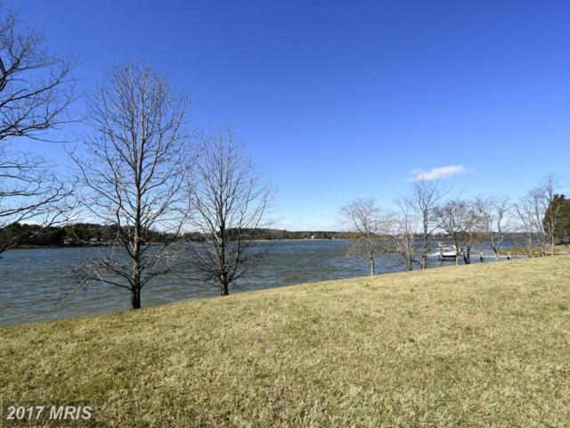 Martingham Drive, Saint Michaels, MD 21663 (#TA9876191) :: Pearson Smith Realty