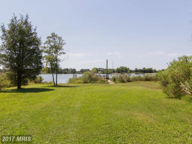 Lamberton Road, Royal Oak, MD 21662 (#TA9904141) :: Pearson Smith Realty
