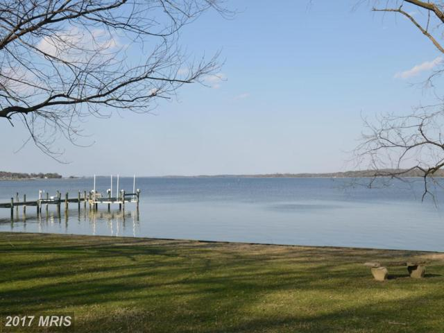 711 Riverview Terrace, Saint Michaels, MD 21663 (#TA9927569) :: Pearson Smith Realty