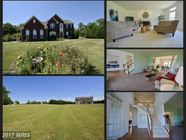 11030 Forest View Lane, Easton, MD 21601 (#TA9964873) :: Pearson Smith Realty