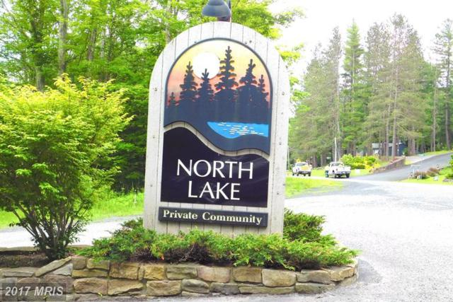 34 Mallow Lake Drive, Davis, WV 26260 (#TU9867083) :: Pearson Smith Realty