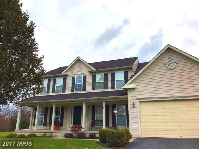 20010 Lindenhurst Court, Hagerstown, MD 21742 (#WA10017730) :: Pearson Smith Realty