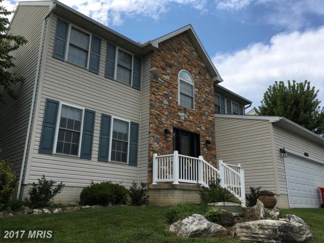 9 Rockingham Drive, Keedysville, MD 21756 (#WA10023766) :: Pearson Smith Realty