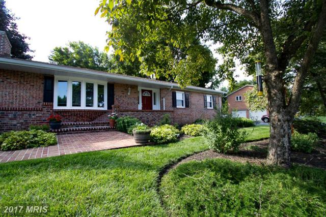 13810 Long Ridge Drive, Hagerstown, MD 21742 (#WA10025943) :: Pearson Smith Realty