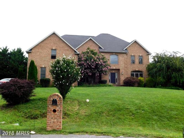 11211 Shalom Lane, Hagerstown, MD 21742 (#WA10029547) :: Pearson Smith Realty