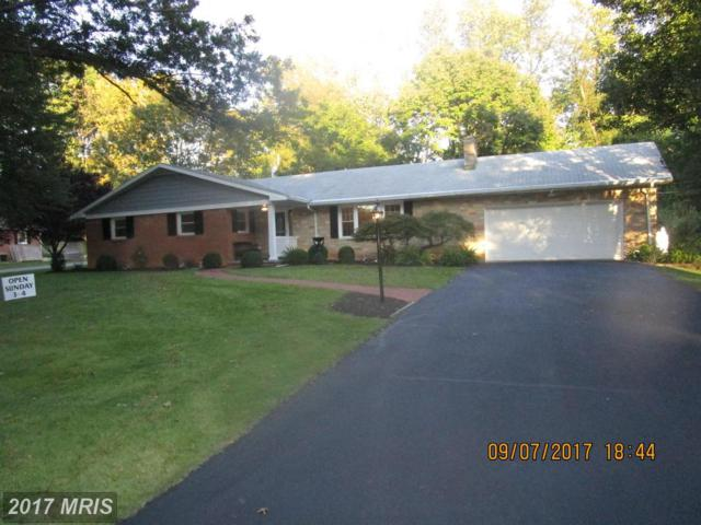 13027 Woodburn Drive, Hagerstown, MD 21742 (#WA10051037) :: Pearson Smith Realty