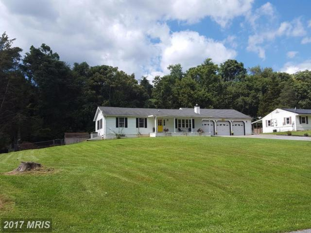 16751 Taylors Landing Road, Sharpsburg, MD 21782 (#WA10059338) :: Pearson Smith Realty