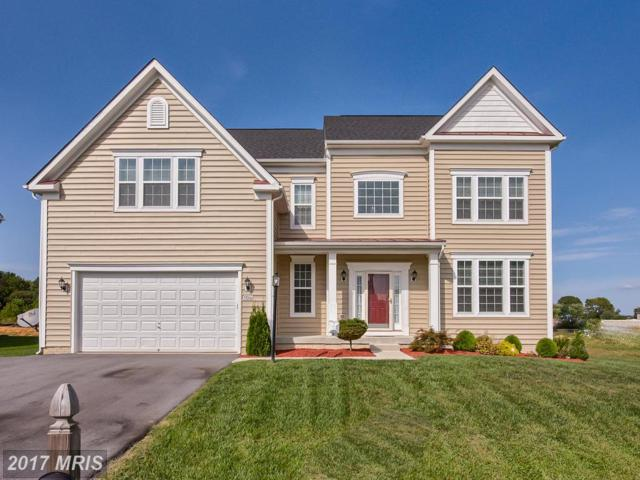 19006 Black Maple Way, Hagerstown, MD 21742 (#WA10060802) :: LoCoMusings