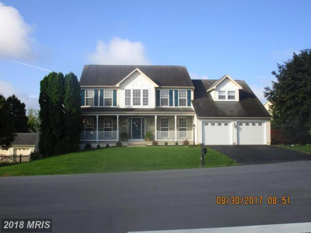 19503 Portsmouth Drive, Hagerstown, MD 21742 (#WA10108313) :: Browning Homes Group