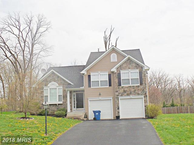 11503 High Ridge Court, Hagerstown, MD 21742 (#WA10221567) :: The Gus Anthony Team