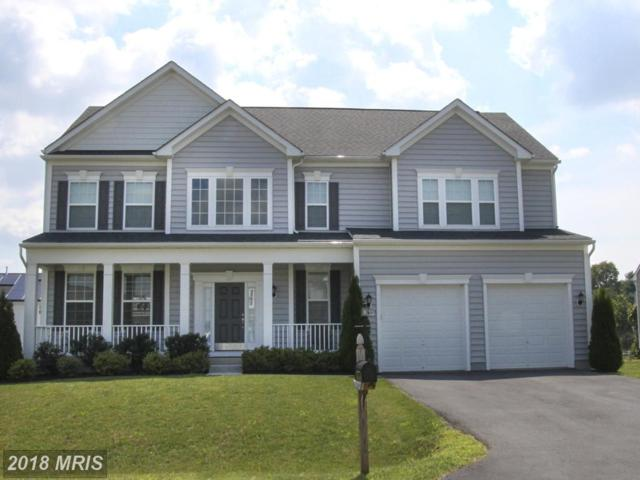 19009 Black Maple Way, Hagerstown, MD 21742 (#WA10330145) :: RE/MAX Executives