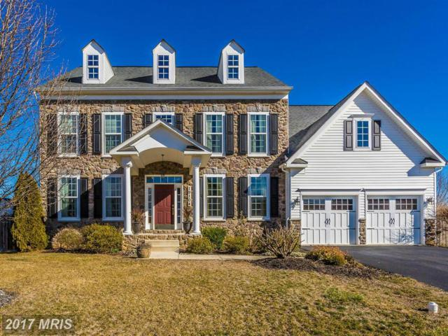 19104 Red Maple Drive, Hagerstown, MD 21742 (#WA9869683) :: Pearson Smith Realty