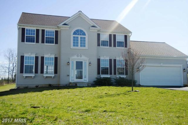 11404 Sunny Hill Court, Hagerstown, MD 21742 (#WA9897585) :: LoCoMusings