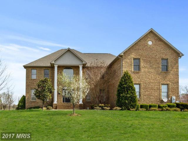 10977 Sassan Lane, Hagerstown, MD 21742 (#WA9918472) :: Pearson Smith Realty