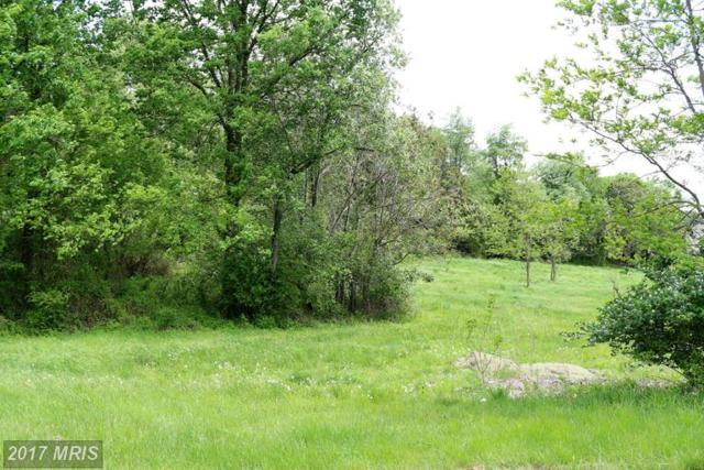 8211 Prophet Acres Road, Fairplay, MD 21733 (#WA9948249) :: Pearson Smith Realty