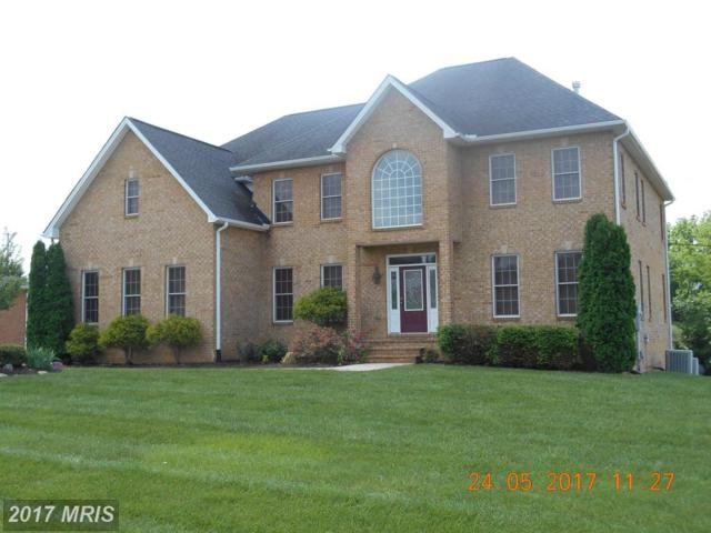 10916 Sassan Lane, Hagerstown, MD 21742 (#WA9957012) :: Pearson Smith Realty