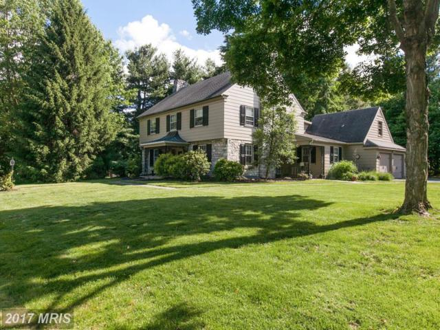 12912 Lauran Road, Hagerstown, MD 21742 (#WA9971015) :: Pearson Smith Realty