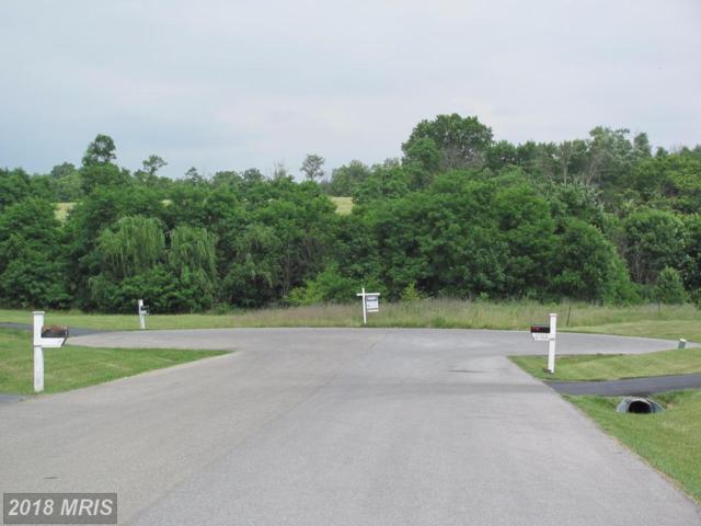 17000 Bivens Lane, Hagerstown, MD 21740 (#WA9976614) :: Keller Williams Pat Hiban Real Estate Group