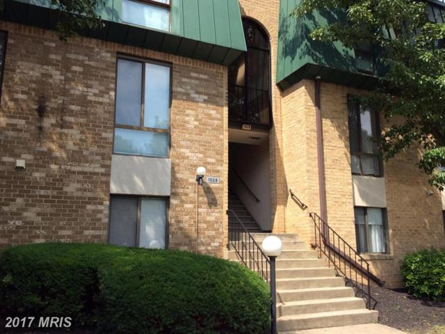 1028-301 Brinker Drive #301, Hagerstown, MD 21740 (#WA9979796) :: Pearson Smith Realty