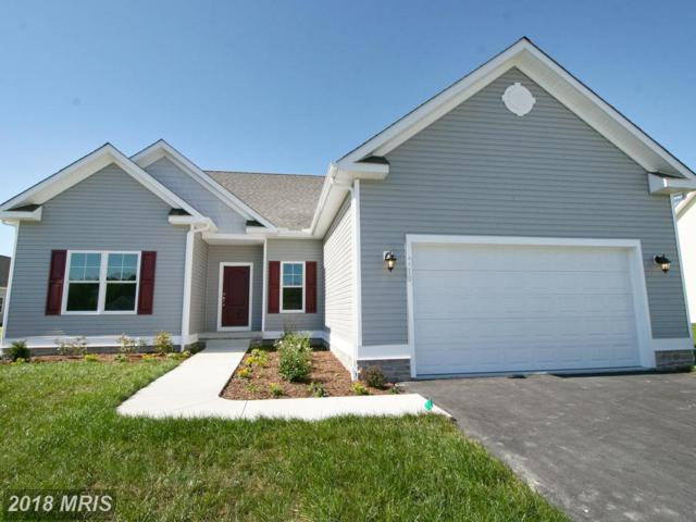 9510 Heron Ponds Parkway, Delmar, MD 21875 (#WC10088785) :: Browning Homes Group