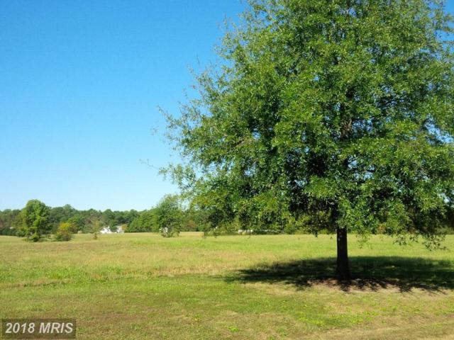 38 Nomini Bay Drive, Montross, VA 22520 (#WE10084596) :: Fine Nest Realty Group