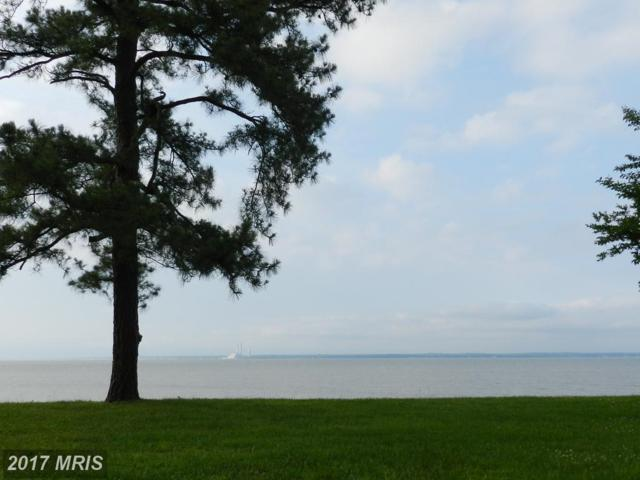 0 Riverview Dr, Colonial Beach, VA 22443 (#WE9967608) :: LoCoMusings