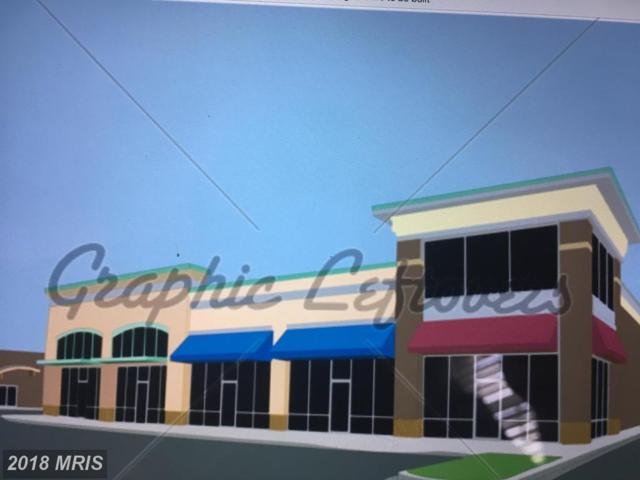 Dairy Corner Place, Winchester, VA 22601 (#WI10123281) :: Pearson Smith Realty