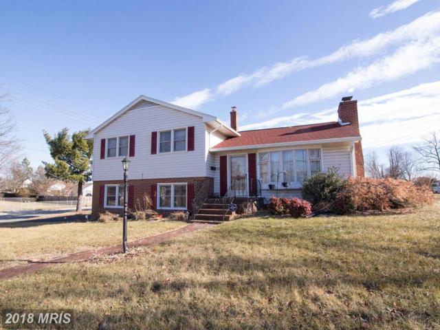 132 Molden Drive, Winchester, VA 22601 (#WI10131308) :: Pearson Smith Realty