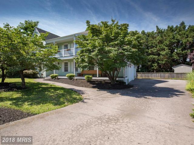 1560 Moffett Drive, Winchester, VA 22601 (#WI10303843) :: Bob Lucido Team of Keller Williams Integrity