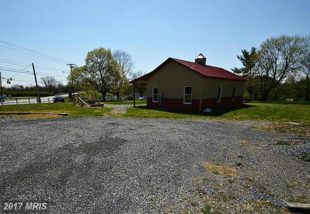 3153 Papermill Road, Winchester, VA 22601 (#WI9889375) :: LoCoMusings