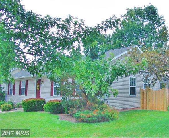 329 Cedarmeade Avenue, Winchester, VA 22601 (#WI9978013) :: Pearson Smith Realty