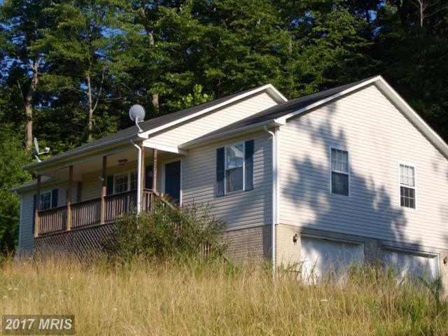 427 Vesey Drive, Front Royal, VA 22630 (#WR10015475) :: Pearson Smith Realty